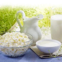 Молоко / сметана / йогурт / кефир / творог